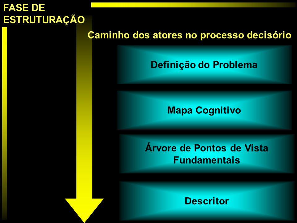 Definição do Problema Mapa Cognitivo Descritor Árvore de Pontos de Vista Fundamentais Caminho dos atores no processo decisório FASE DE ESTRUTURAÇÃO