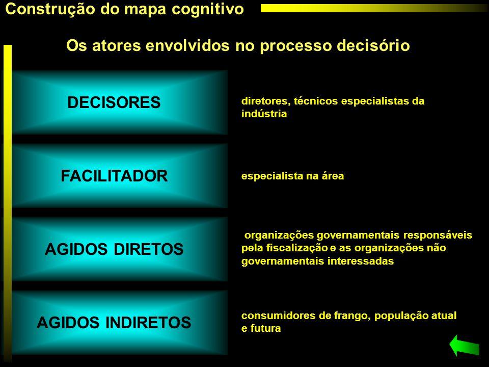 Construção do mapa cognitivo Os atores envolvidos no processo decisório diretores, técnicos especialistas da indústria especialista na área organizaçõ