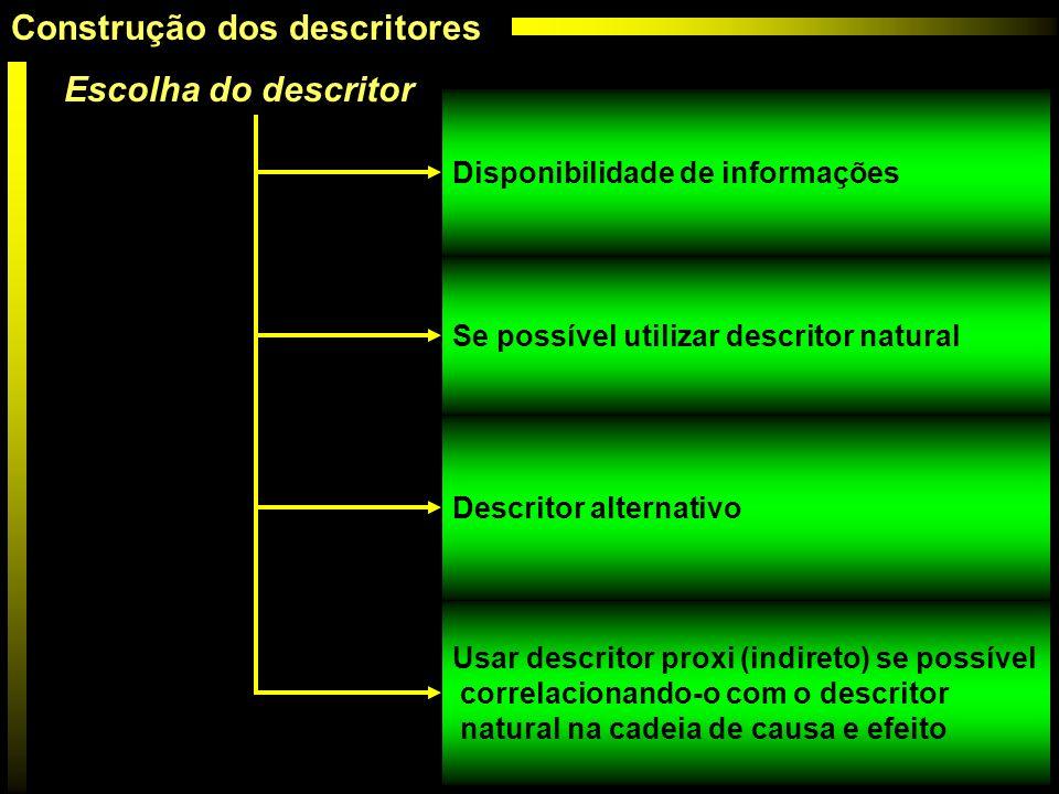 Escolha do descritor Disponibilidade de informações Se possível utilizar descritor natural Descritor alternativo Usar descritor proxi (indireto) se po