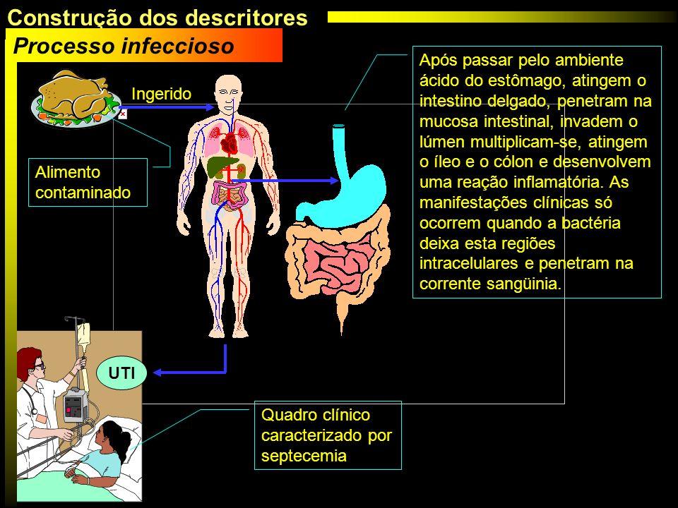 Após passar pelo ambiente ácido do estômago, atingem o intestino delgado, penetram na mucosa intestinal, invadem o lúmen multiplicam-se, atingem o íle