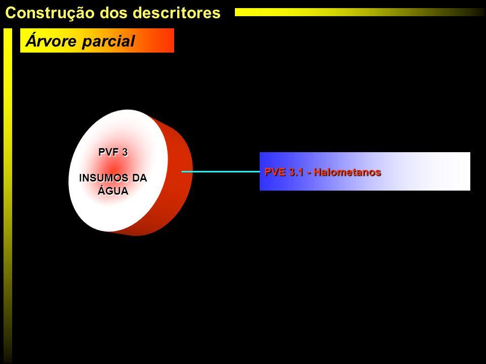 PVF 3 INSUMOS DA ÁGUA PVE 3.1 - Halometanos Árvore parcial Construção dos descritores