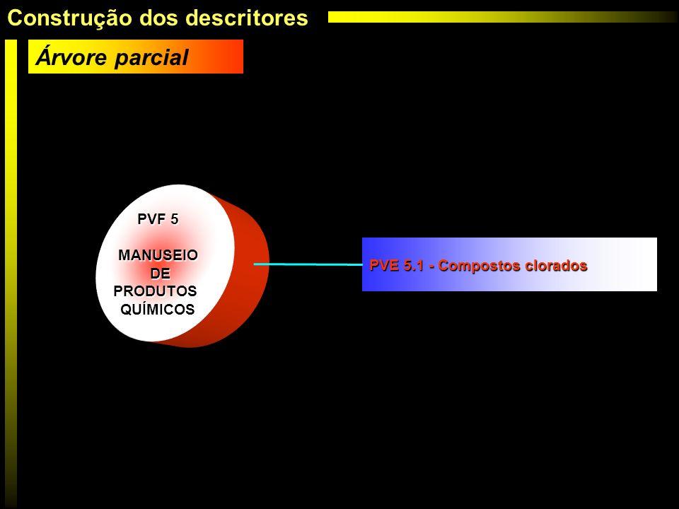 PVF 5 MANUSEIO DE DEPRODUTOSQUÍMICOS PVE 5.1 - Compostos clorados Árvore parcial Construção dos descritores
