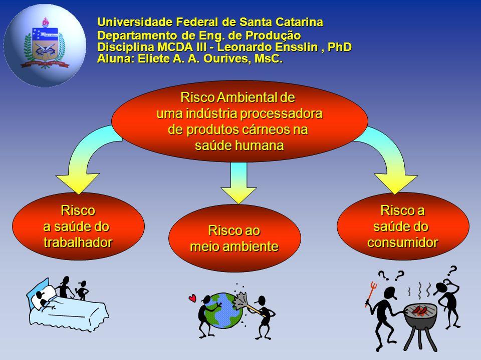Risco a saúde do trabalhador Risco a saúde do consumidor Risco ao meio ambiente Universidade Federal de Santa Catarina Departamento de Eng.