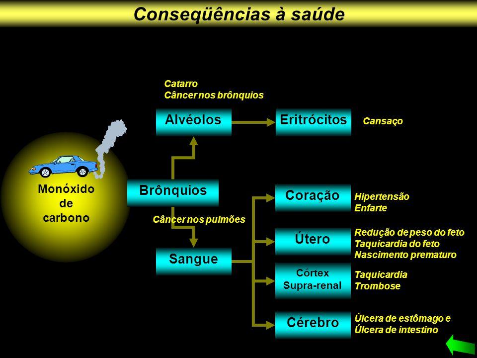 Brônquios Sangue Cérebro Alvéolos Coração Útero Córtex Supra-renal Eritrócitos Catarro Câncer nos brônquios Cansaço Hipertensão Enfarte Redução de pes