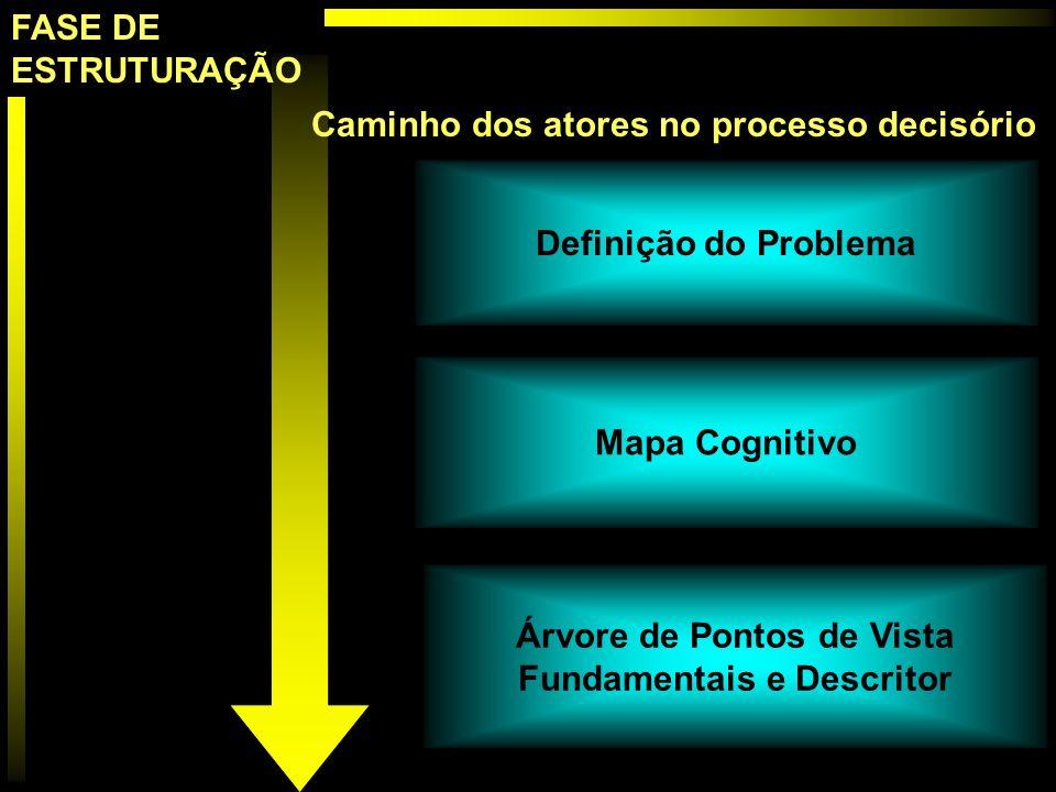 Definição do Problema Mapa Cognitivo Árvore de Pontos de Vista Fundamentais e Descritor Caminho dos atores no processo decisório FASE DE ESTRUTURAÇÃO