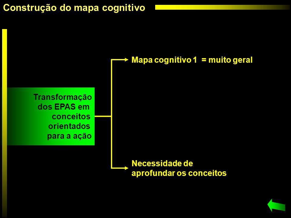 Mapa cognitivo 1 = muito geral Necessidade de aprofundar os conceitos Transformação dos EPAS em conceitos orientados para a ação Construção do mapa co
