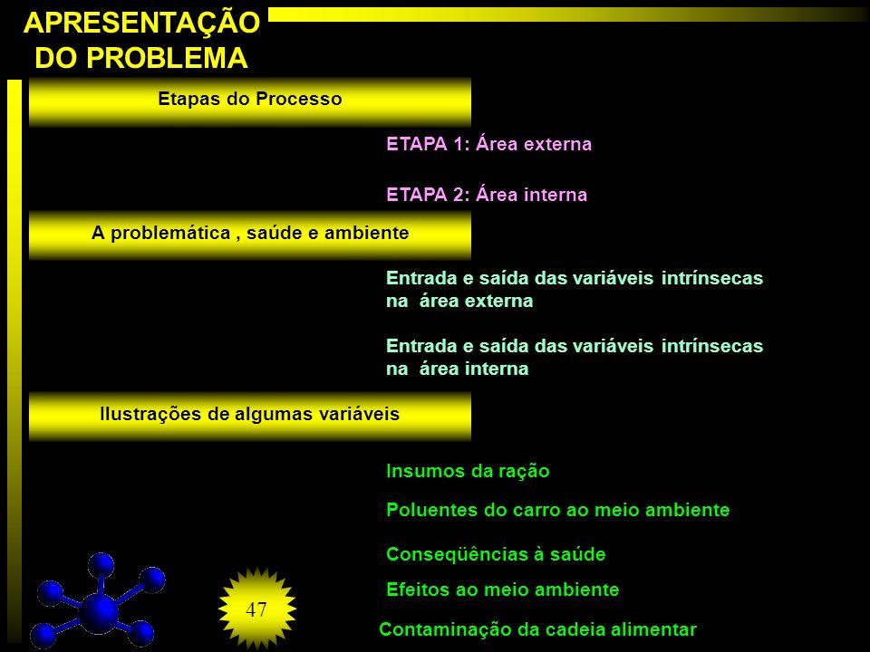 APRESENTAÇÃO DO PROBLEMA Etapas do Processo A problemática, saúde e ambiente Ilustrações de algumas variáveis ETAPA 1: Área externa ETAPA 2: Área inte
