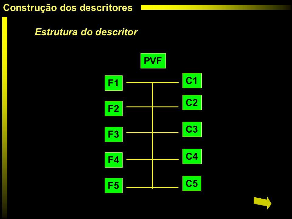 Estrutura do descritor PVF C5 C1 C4 C3 C2 F5 F1 F2 F3 F4 Construção dos descritores