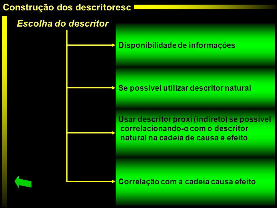 Escolha do descritor Disponibilidade de informações Se possível utilizar descritor natural Usar descritor proxi (indireto) se possível correlacionando