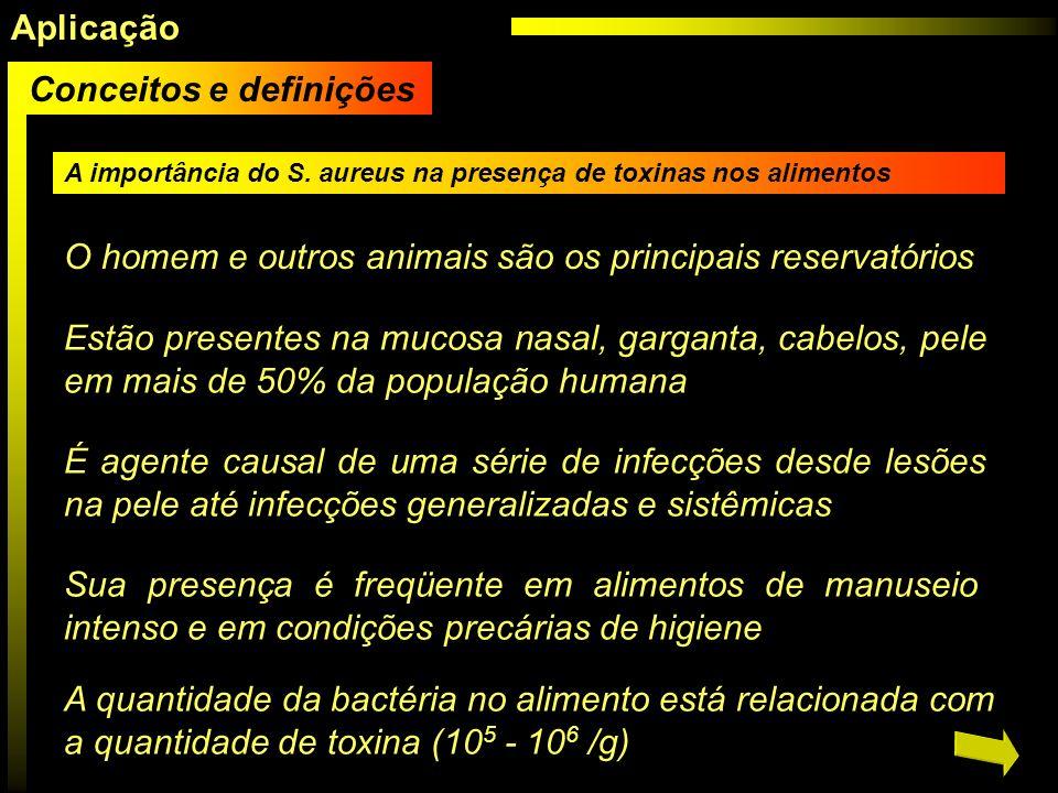 A importância do S. aureus na presença de toxinas nos alimentos O homem e outros animais são os principais reservatórios Estão presentes na mucosa nas