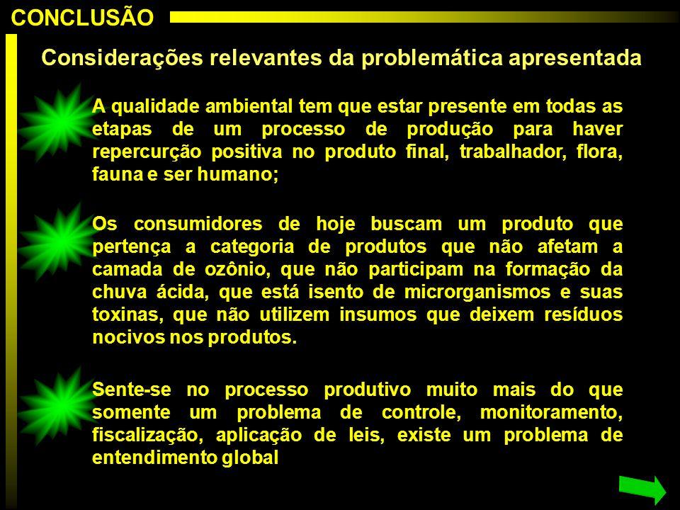 Considerações relevantes da problemática apresentada A qualidade ambiental tem que estar presente em todas as etapas de um processo de produção para h