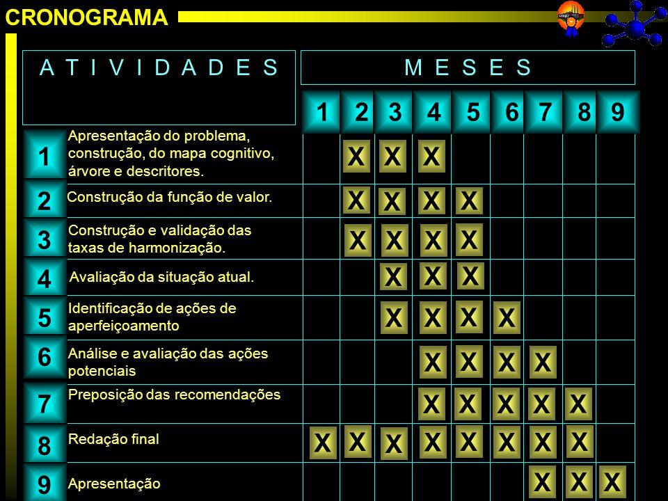 Apresentação CRONOGRAMA 123456789 M E S E SA T I V I D A D E S 1 2 3 4 5 6 7 8 9 Apresentação do problema, construção, do mapa cognitivo, árvore e des