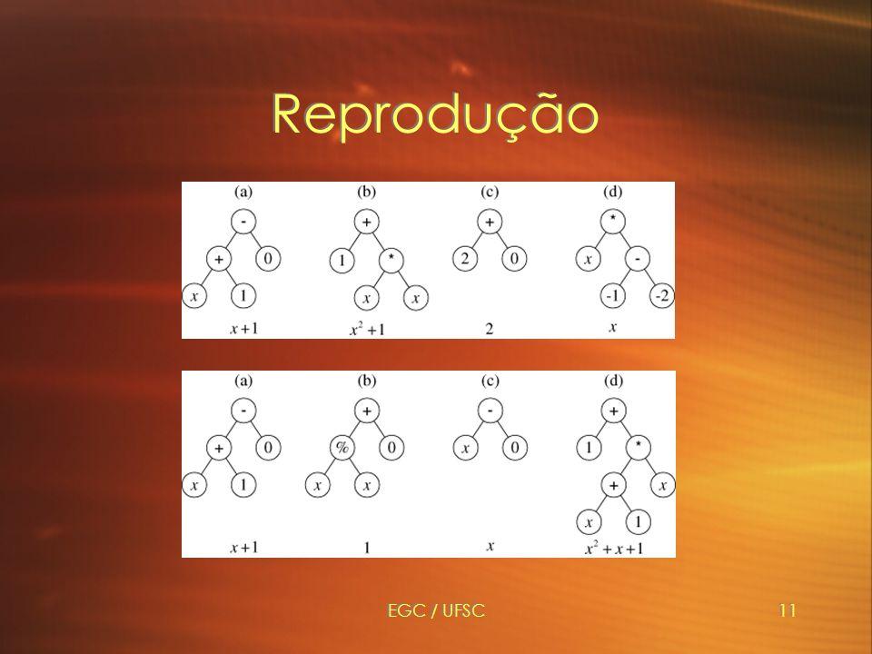 EGC / UFSC11 Reprodução