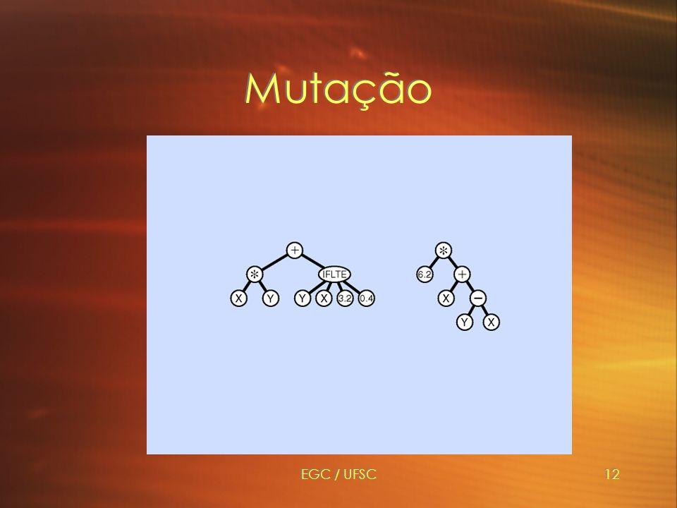 EGC / UFSC12 Mutação