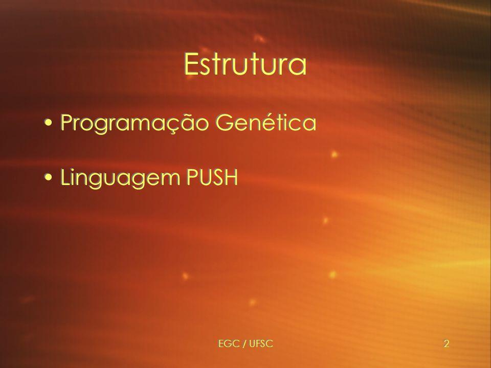 EGC / UFSC2 Estrutura Programação Genética Linguagem PUSH Programação Genética Linguagem PUSH