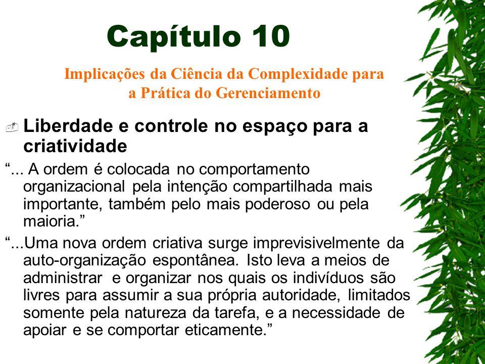Capítulo 10 Liberdade e controle no espaço para a criatividade... A ordem é colocada no comportamento organizacional pela intenção compartilhada mais