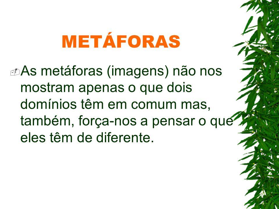 METÁFORAS As metáforas (imagens) não nos mostram apenas o que dois domínios têm em comum mas, também, força-nos a pensar o que eles têm de diferente.