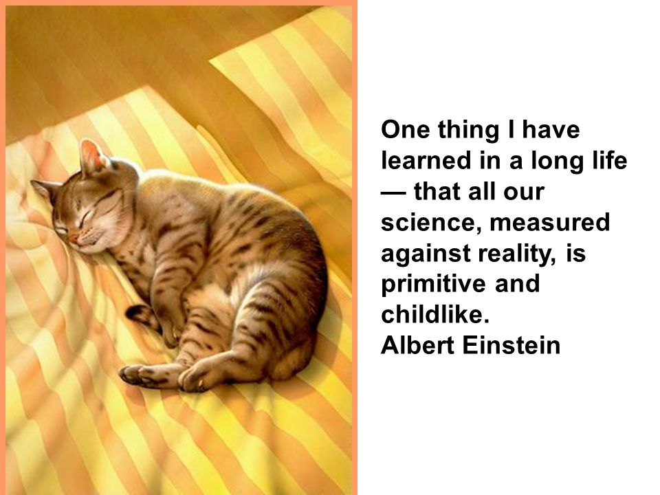 One thing I have learned in a long life that all our science, measured against reality, is primitive and childlike. Albert Einstein