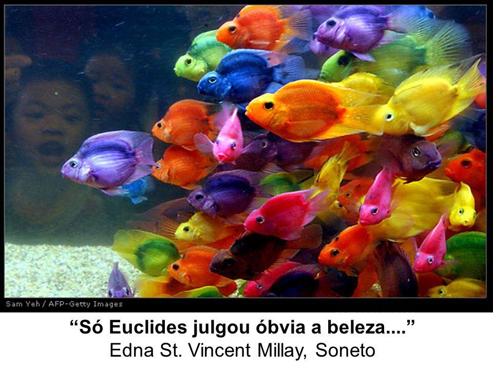 Só Euclides julgou óbvia a beleza.... Edna St. Vincent Millay, Soneto