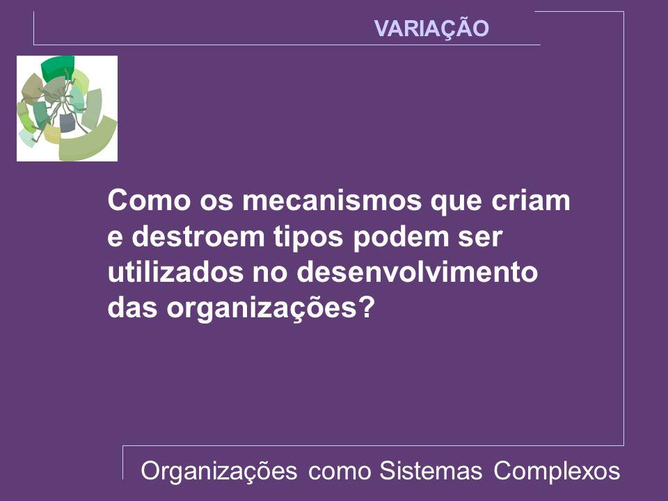 VARIAÇÃO Como os mecanismos que criam e destroem tipos podem ser utilizados no desenvolvimento das organizações? Organizações como Sistemas Complexos
