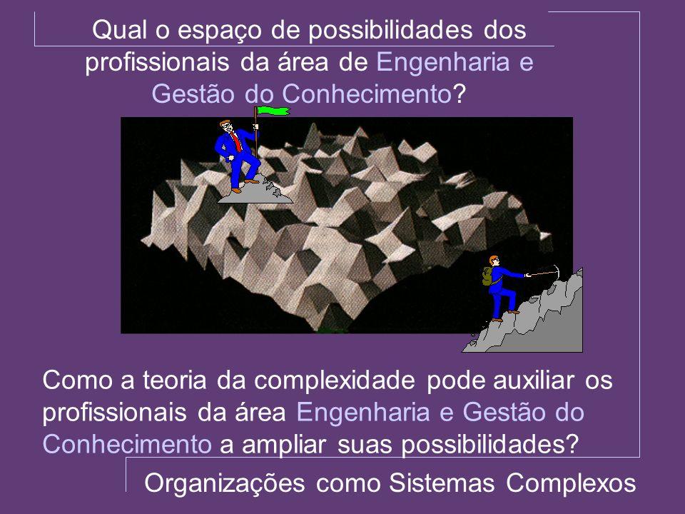 Organizações como Sistemas Complexos Qual o espaço de possibilidades dos profissionais da área de Engenharia e Gestão do Conhecimento? Como a teoria d