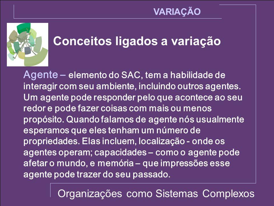 Conceitos ligados a variação VARIAÇÃO Organizações como Sistemas Complexos Agente – elemento do SAC, tem a habilidade de interagir com seu ambiente, i