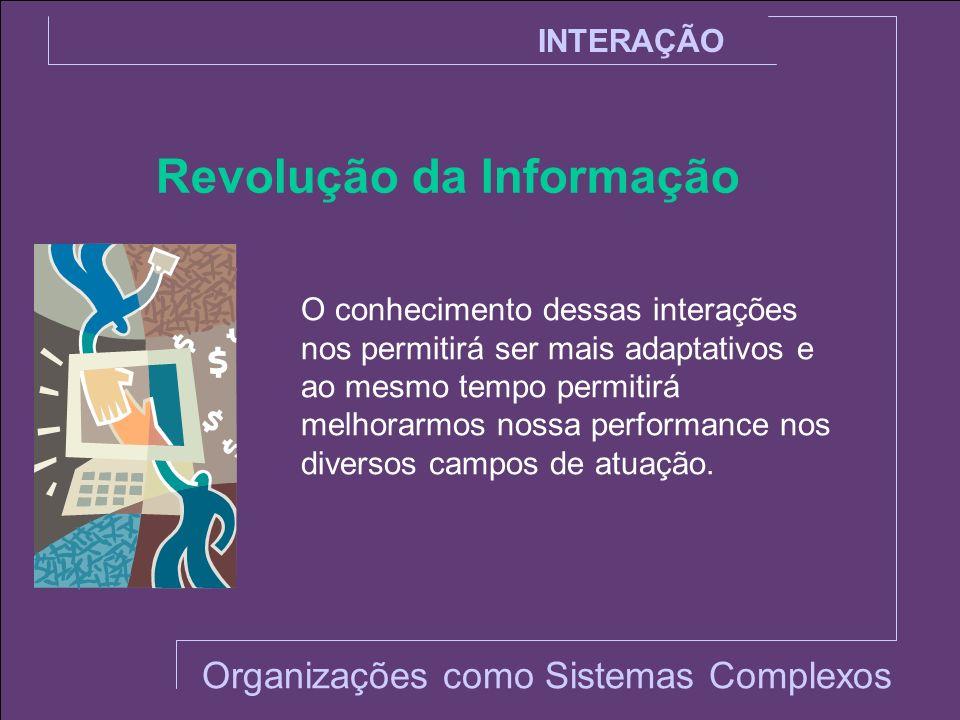 INTERAÇÃO Revolução da Informação O conhecimento dessas interações nos permitirá ser mais adaptativos e ao mesmo tempo permitirá melhorarmos nossa per