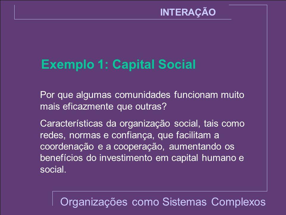 INTERAÇÃO Exemplo 1: Capital Social Por que algumas comunidades funcionam muito mais eficazmente que outras? Características da organização social, ta