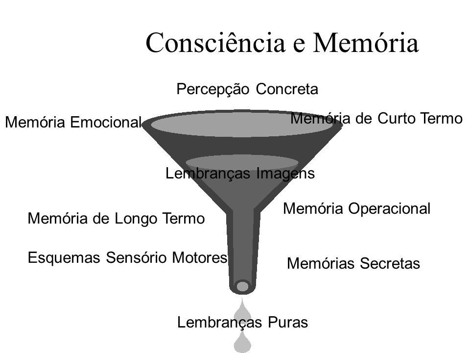 Consciência e Memória Memória Emocional Memória de Curto Termo Percepção Concreta Lembranças Puras Lembranças Imagens Esquemas Sensório Motores Memória Operacional Memórias Secretas Memória de Longo Termo