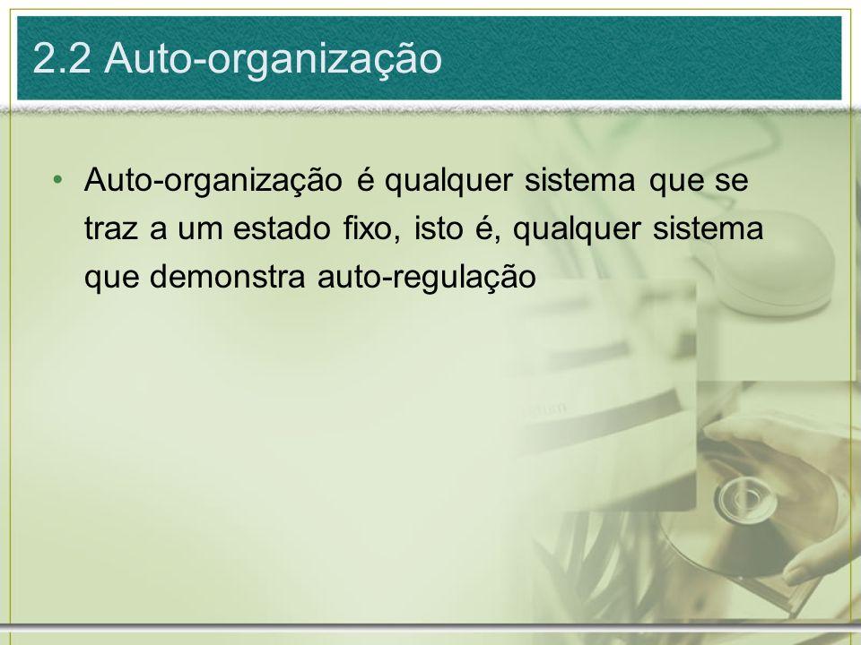 2.2 Auto-organização Auto-organização é qualquer sistema que se traz a um estado fixo, isto é, qualquer sistema que demonstra auto-regulação
