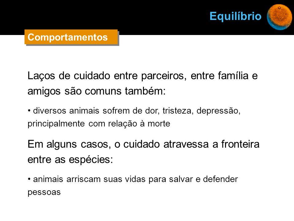 Laços de cuidado entre parceiros, entre família e amigos são comuns também: diversos animais sofrem de dor, tristeza, depressão, principalmente com re