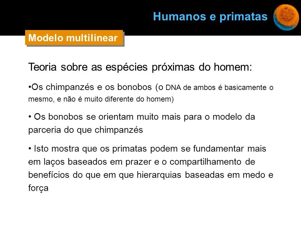 Teoria sobre as espécies próximas do homem: Os chimpanzés e os bonobos (o DNA de ambos é basicamente o mesmo, e não é muito diferente do homem) Os bon