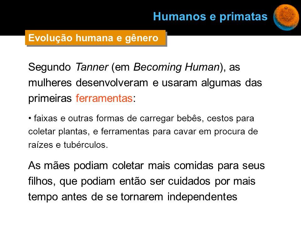 Segundo Tanner (em Becoming Human), as mulheres desenvolveram e usaram algumas das primeiras ferramentas: faixas e outras formas de carregar bebês, ce