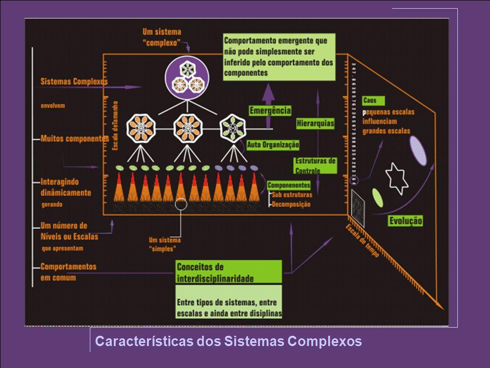 Características dos Sistemas Complexos