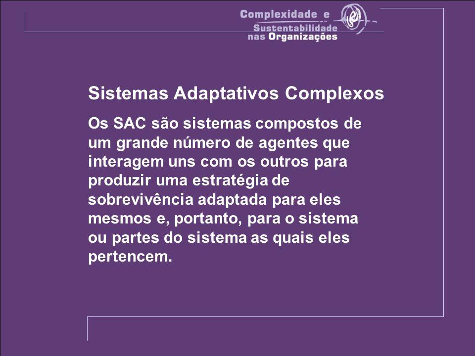 Sistemas Adaptativos Complexos Os SAC são sistemas compostos de um grande número de agentes que interagem uns com os outros para produzir uma estratégia de sobrevivência adaptada para eles mesmos e, portanto, para o sistema ou partes do sistema as quais eles pertencem.