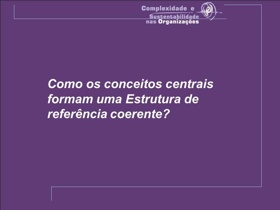 Como os conceitos centrais formam uma Estrutura de referência coerente