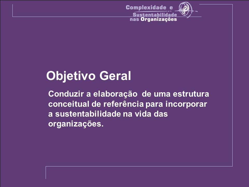 Conduzir a elaboração de uma estrutura conceitual de referência para incorporar a sustentabilidade na vida das organizações.