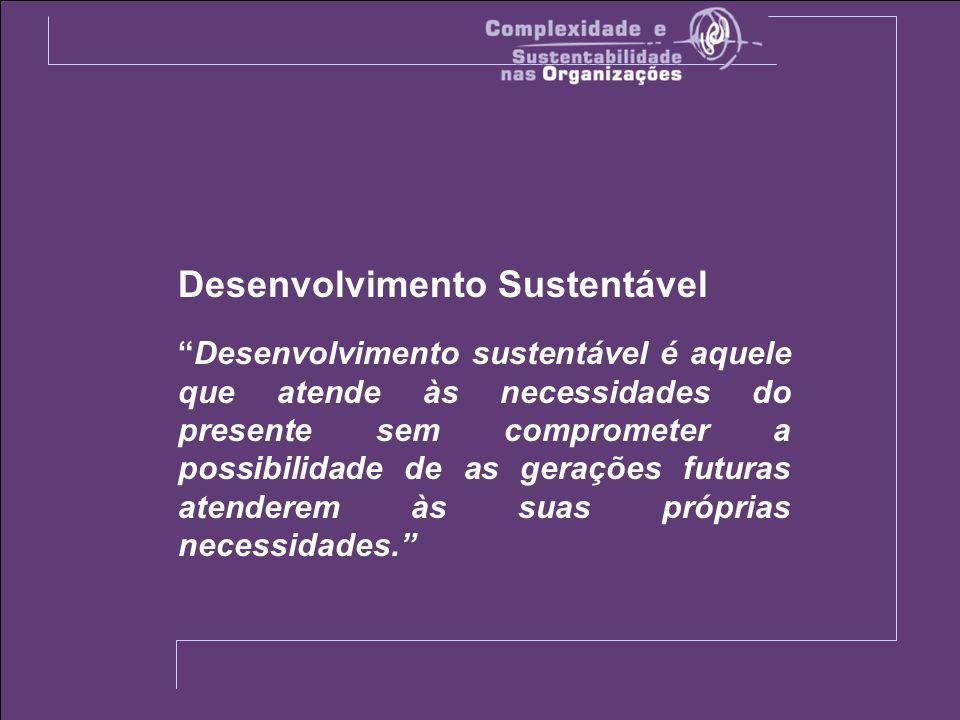 Desenvolvimento Sustentável Desenvolvimento sustentável é aquele que atende às necessidades do presente sem comprometer a possibilidade de as gerações futuras atenderem às suas próprias necessidades.