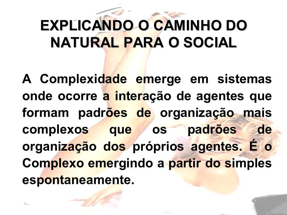 EXPLICANDO O CAMINHO DO NATURAL PARA O SOCIAL A Complexidade emerge em sistemas onde ocorre a interação de agentes que formam padrões de organização mais complexos que os padrões de organização dos próprios agentes.