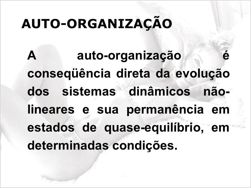 AUTO-ORGANIZAÇÃO A auto-organização é conseqüência direta da evolução dos sistemas dinâmicos não- lineares e sua permanência em estados de quase-equilíbrio, em determinadas condições.