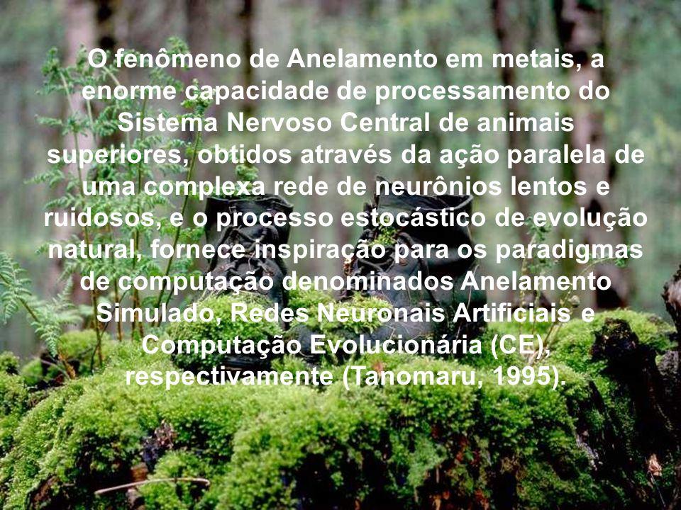 O fenômeno de Anelamento em metais, a enorme capacidade de processamento do Sistema Nervoso Central de animais superiores, obtidos através da ação paralela de uma complexa rede de neurônios lentos e ruidosos, e o processo estocástico de evolução natural, fornece inspiração para os paradigmas de computação denominados Anelamento Simulado, Redes Neuronais Artificiais e Computação Evolucionária (CE), respectivamente (Tanomaru, 1995).