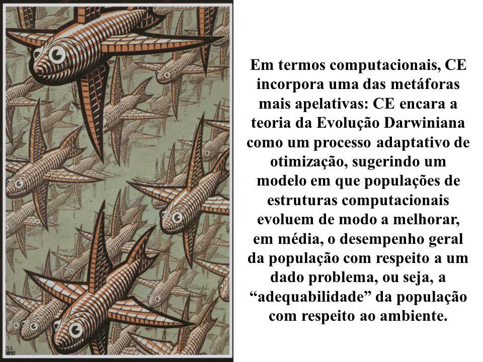 Em termos computacionais, CE incorpora uma das metáforas mais apelativas: CE encara a teoria da Evolução Darwiniana como um processo adaptativo de otimização, sugerindo um modelo em que populações de estruturas computacionais evoluem de modo a melhorar, em média, o desempenho geral da população com respeito a um dado problema, ou seja, a adequabilidade da população com respeito ao ambiente.