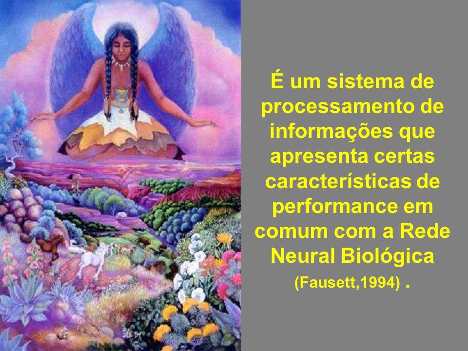 É um sistema de processamento de informações que apresenta certas características de performance em comum com a Rede Neural Biológica (Fausett,1994).