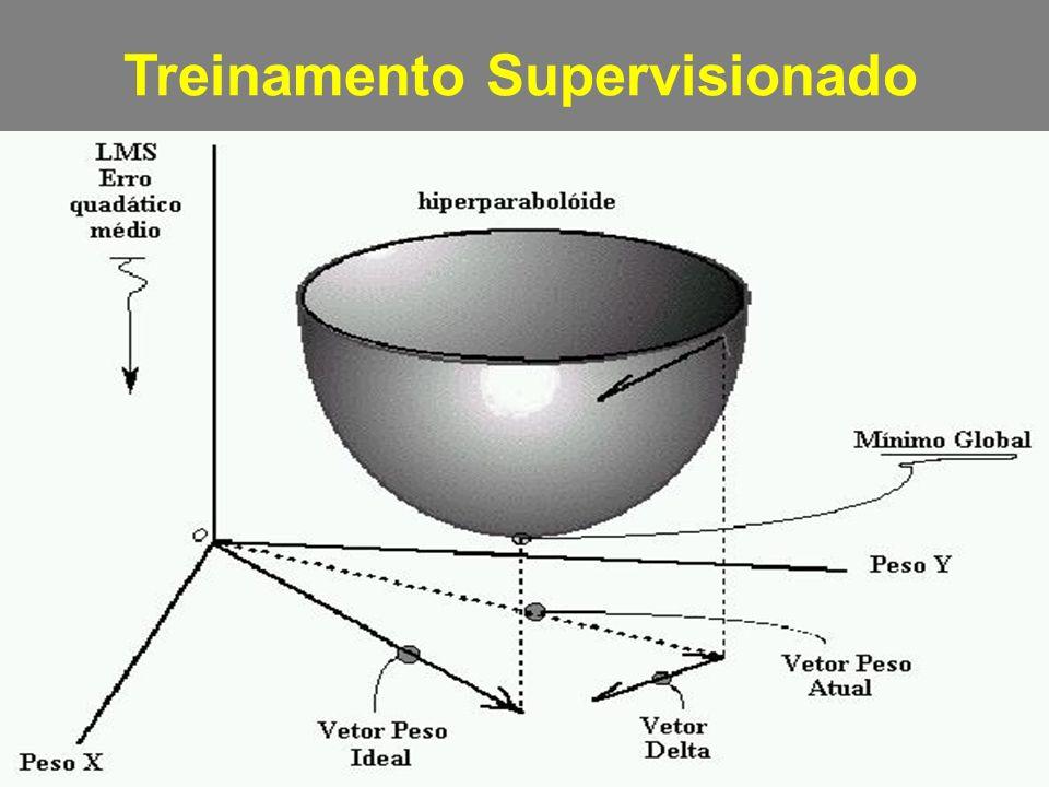 Treinamento Supervisionado