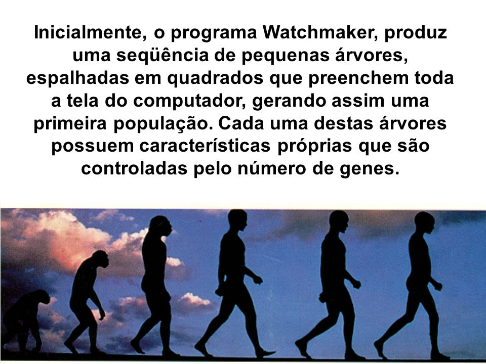 Inicialmente, o programa Watchmaker, produz uma seqüência de pequenas árvores, espalhadas em quadrados que preenchem toda a tela do computador, gerando assim uma primeira população.