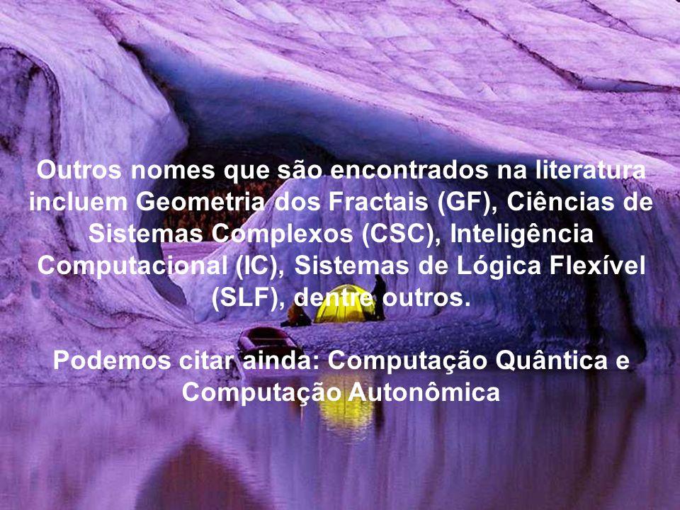 Outros nomes que são encontrados na literatura incluem Geometria dos Fractais (GF), Ciências de Sistemas Complexos (CSC), Inteligência Computacional (IC), Sistemas de Lógica Flexível (SLF), dentre outros.