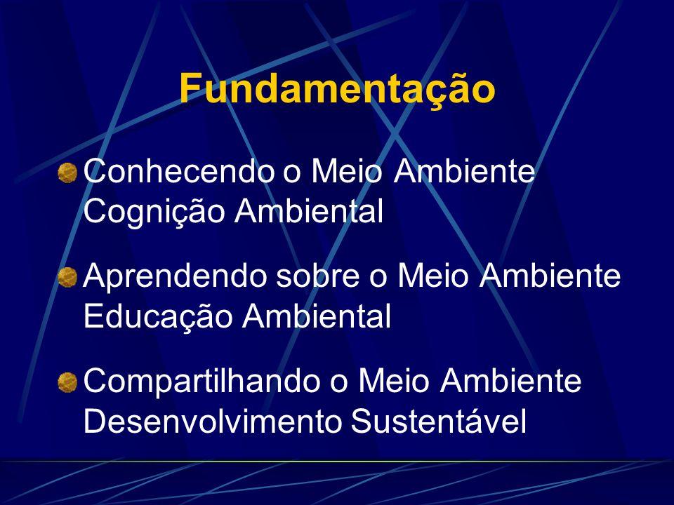 Hipótese Geral Os fatores relevantes geradores da conscientização ambiental dos alunos do curso de Engenharia do Cefet-Pr de Curitiba são identificáve