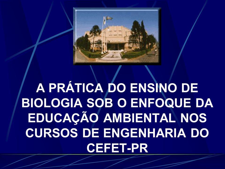 PROGRAMA DE PÓS-GRADUAÇÃO EM ENGENHARIA DA PRODUÇÃO Orientador: Prof. Dr. Francisco Antonio Pereira Fialho Nair Lobo Pacheco Florianópolis, 15 de junh