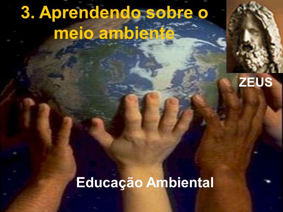 Meio Ambiente CEFET-PR 2.1. O cenário da Educação Tecnológica 2.2. Educação Trabalho e Desenvolvimento 2.3. Modificações históricas 2.4. As interferên