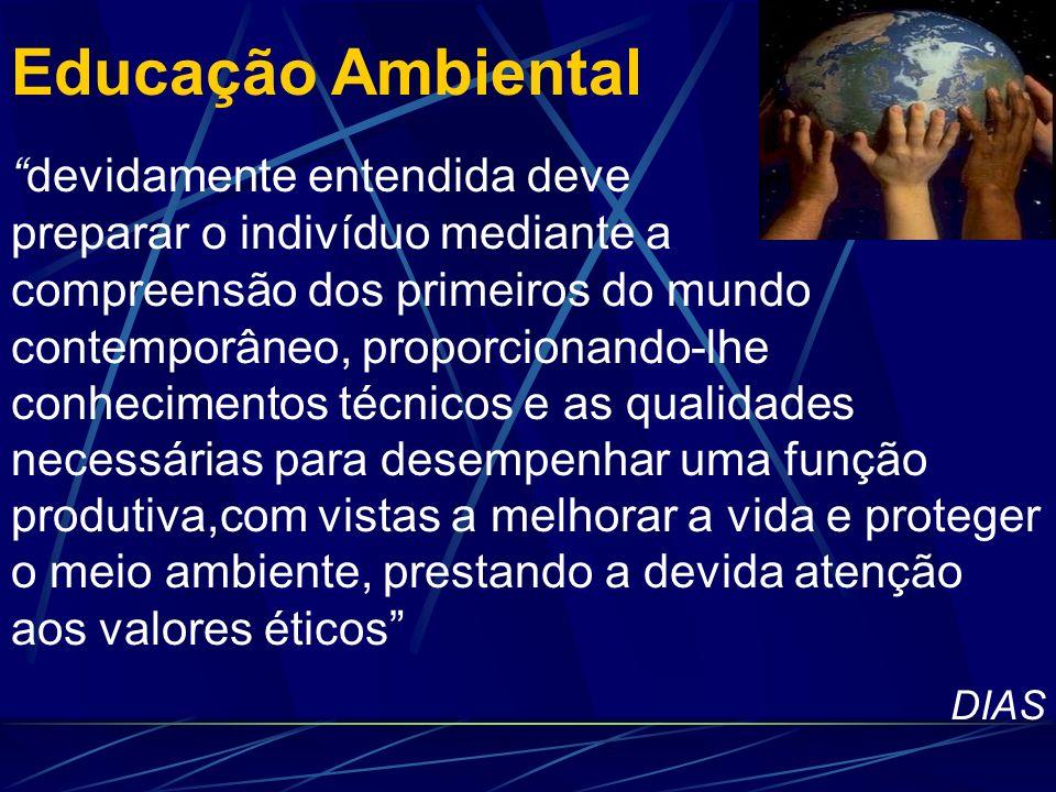 Educação Ambiental Informação Conhecimento CompreensãoSabedoria HOCK